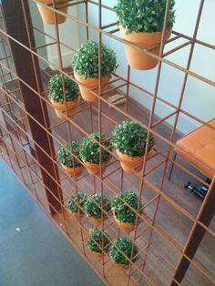 reo mesh vertical garden - Google Search