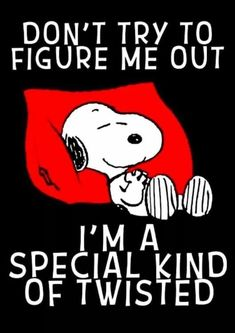 Ahh Snoopy you're wonderful💜 Snoopy Images, Snoopy Pictures, Funny Pictures, Charlie Brown Quotes, Charlie Brown And Snoopy, Peanuts Quotes, Snoopy Quotes, Snoopy Love, Snoopy And Woodstock