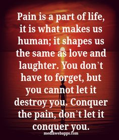 Pain is a part of life, it is what makes us human; it shapes us the same as love and laughter. You don`t have to forget, but you cannot let it destroy you. Conquer the pain, don`t let it conquer you.