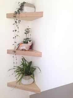 Baltic Birch Plywood Corner Shelf is part of Corner shelves SHELVES SOLD INDIVIDUALLYThis floating shelf is a great way to liven up those boring corners Makes an eyecatching display for plants or - Room Ideas Bedroom, Bedroom Decor, Bedroom Plants, House Plants Decor, Cute Room Decor, Aesthetic Room Decor, Floating Shelves, Living Room Decor, Diy Home Decor