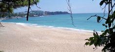 Beach in Seogwipo (2nd largest island) in Jeju Island, Korea