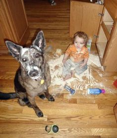 10 Kids Causing Mischief With Pets