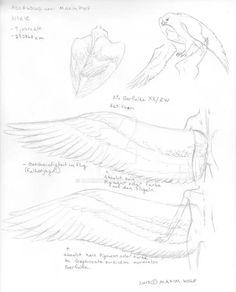 http://maximwolf.deviantart.com/art/Nixie-s-Wings-Deu-377802791