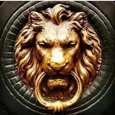 Lion Door Knocker, Door Knockers, Wall Sculptures, Sculpture Art, Mini Mundo, Lion Wallpaper, Flower Wallpaper, Chest Piece Tattoos, Game Of Thrones Houses