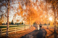 Fall Wedding Composite by amhill