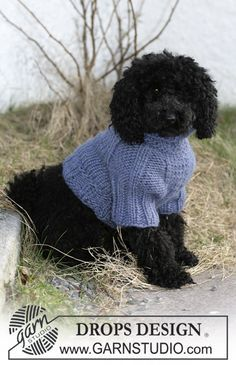 "DROPS 102-44 - DROPS dog coat in ""Eskimo"". - Free pattern by DROPS Design"