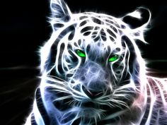 animal fractals | White Fractal Tiger - Totem Talk