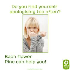 Do you find yourself apologising too often? #Pine #BachFlowerRemedies #Bachflowers