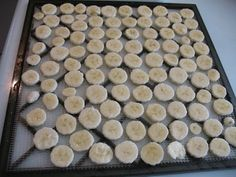 Making Banana Chips by Dehydrating Bananas » Food Storage and Survival