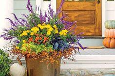 108 Container Gardening Ideas
