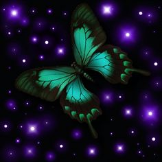 Purple Butterfly and Stars Wallpaper | butterfly stars green aqua graphic