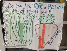 Do you like tops or bottoms of plants best (for Tops and Bottoms by Janet Stevens)