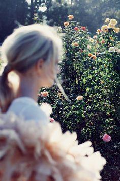 Rose Garden #destinationsummer