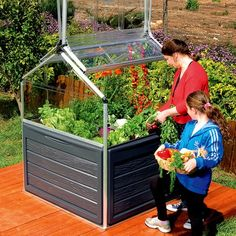 Plant Inn Raised Garden Bed - This would be perfect to keep the animals out.