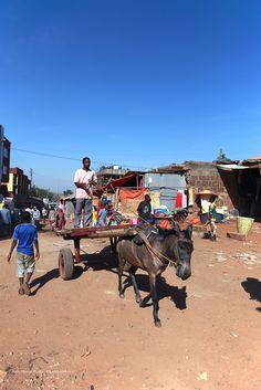 Sur la route direction Awasa in Ethiopia