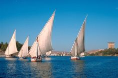 Aswan. Egypt. #majesticeegypttravel #felucca #Travel #TravelTuesday #travelphotography Nile River, Egypt Travel, Luxury Holidays, Most Beautiful Cities, Luxor, Day Tours, Cairo, Sailing, Temples