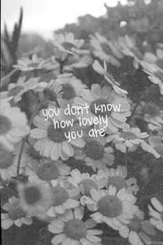 you don't know how lovely you are