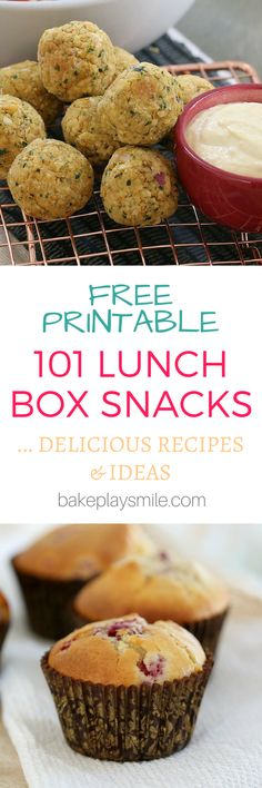 101 lunch box snacks and recipes