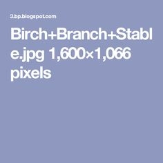 Birch+Branch+Stable.jpg 1,600×1,066 pixels