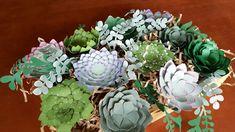 Paper Succulents, Wood Boxes, Cricut Design, Projects, Plants, Paper Cactus, Log Projects, Wooden Crates, Blue Prints