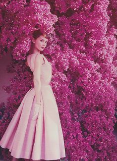 Beyond Pretty In Pink | Audrey Hepburn by Norman Parkinson | Light Pink 1950s Summer Dress | Classic Hollywood Icon | Diva | Darling | Pinup | Cheesecake