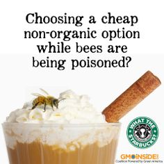 Both GMO crops and conventional crops use bee-killing pesticides. Choosing organic is the only way to avoid GMOs, toxic pesticides, save our pollinators, and support a sustainable future. Tell Starbucks to serve only organic milk here: www.gmoinside.org/starbucks For more information on colony collapse, bees, and pesticides use these source links: http://www.seattleorganicrestaurants.com/vegan-who...See More