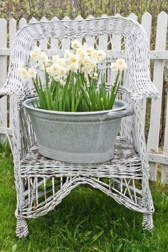 Flowers in a pot on a chair....of course!!