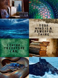 H O R N E D S E R P E N T Horned Serpent is one of the four houses at Ilvermorny School of Witchcraft and Wizardry. It was named after the Great Horned Serpent which is a river serpent that has a jewel set into its forehead. The Horned Serpent is described as a giant underwater serpent covered with iridescent, crystalline scales and a single, large crystal in its forehead. Its magical abilities include shape-shifting, invisibility and hypnotic powers. Horned Serpent house represents the…