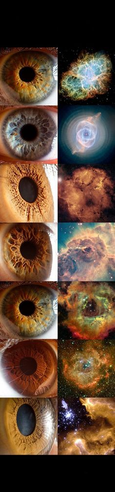 Universe is in your eyes, universe is you! Understand the universe, is understand us.