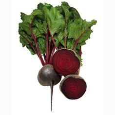 Beetroot Bolivar ORGANIC Seeds - Irish Plants Direct