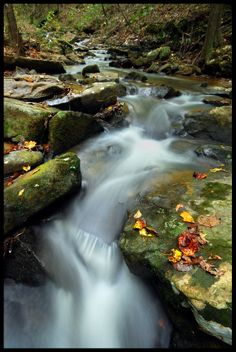 In the Groove - autumn, Bamawester Creek, Cullman County, Alabama