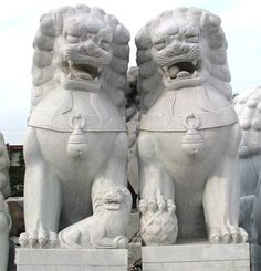 Picture of male and female Chinese Lions on display in stone masons yard between Zhengzhou and Dengfeng, China.