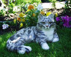 winstanley cat..