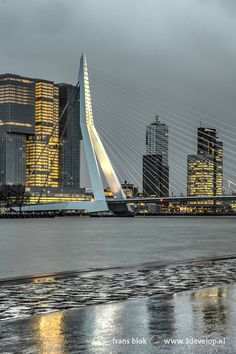Erasmus Bridge reflecting in the wet asphalt on Boompjes Quay, Rotterdam Ancient Greek Architecture, Chinese Architecture, Classical Architecture, Rotterdam Architecture, Futuristic Architecture, Europa Tour, City Photography, Rainy Day Photography, Amazing Buildings
