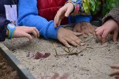 attività didattica con la scuola primaria a La Ca' di Asu - quadrante sensoriale