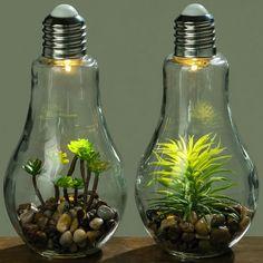 Light Bulb Vase, Light Bulb Crafts, Terrarium Diy, Water Bongs For Sale, Plant Projects, Inside Plants, House Plants Decor, Boho Diy, Diy Planters