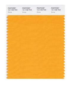 pantone 14-1159 tpx - Google Search