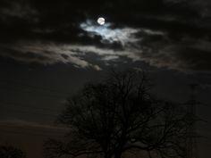 Telkens wanneer Maja 's nachts de vos volgt, spreekt het boek over de maan die tussen de wolken schijnt.