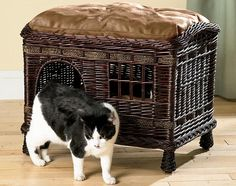 sweet rattan #cat bed/tower