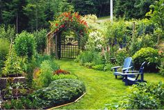 Eat Healthy- Grow Your Own Organic Food – it is easy !!!