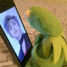 kermit x bts Meme Faces, Funny Faces, Sapo Meme, Frog Meme, Bts Reactions, Kermit The Frog, Cute Memes, I Love Bts, Wholesome Memes