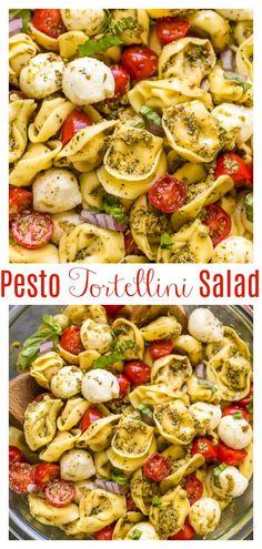 This Easy Pesto Tortellini Pasta Salad is ready in about 10 minutes! Made with just basic 5 ingredients you probably have in the kitchen right now! This is the perfect side dish for Summer parties, picnics, or potlucks!!! #pastasalad #pesto #pestopastasalad #tortellini #tortellinipastasalad