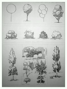 In this article, we will be taking you through how to draw a tree step by step image guides, which is one of nature's bounties that inspires so many. Befor to drawing a tree How To Draw A Tree (Step By Step Image Guides) Landscape Architecture Drawing, Landscape Sketch, Landscape Drawings, Sketch Architecture, Plant Sketches, Tree Sketches, Art Drawings Sketches, Architectural Trees, Tree Drawings Pencil