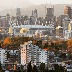 Zooming in from my balcony in Burnaby towards my city skyline and all it's Autumn colours. I love this time of year! #Goldenhour  #Vancouver  #November #bcplacestadium