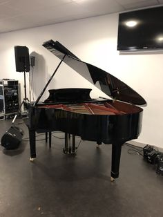 Wilh Steinmann Baby Grand fitted with Pianodisc iQ HD self play from Chiltern Pianos Bovingdon.