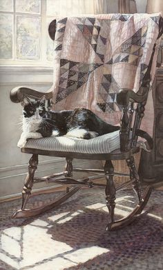 The Cats Lair by Steve Hanks