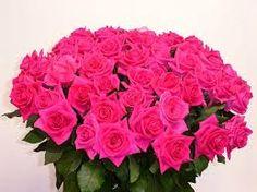 """Vaizdo rezultatas pagal užklausą """"цветы розы"""""""