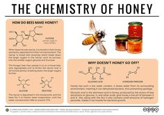 Why Doesn't Honey Spoil? – The Chemistry of Honey – Compound Interest Teaching Chemistry, Science Chemistry, Science Facts, Food Science, Organic Chemistry, Science Experiments, Fun Facts, Chemistry Review, Science Week