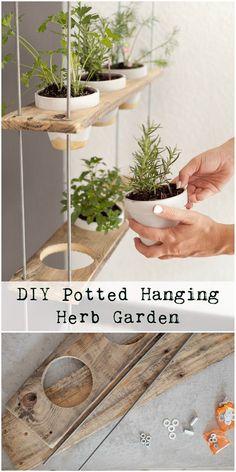 DIY Potted Hanging Herb Garden #indoorherb #herbgarden #hang