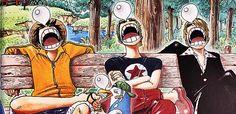 Luffy zoro sanji sleeping